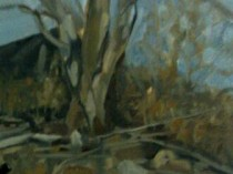 Connecticut Landscape, 2010