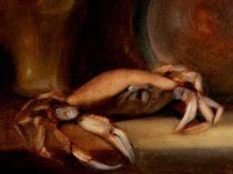 William Eric : Crab, 2006.
